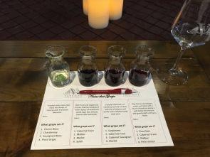 Wine tasting @ Vincent